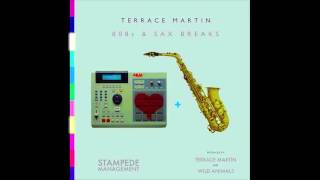 Terrace Martin - Say You will