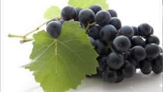 Monodiète de raisin Mp3