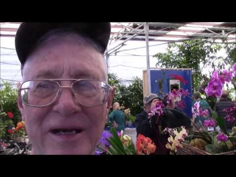 Tucson Orchid Society Show and Sale