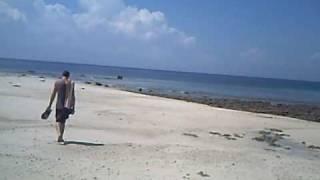 elephant beach Havalock island andamans