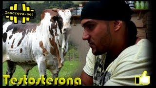 Danilo França - DICAS Testosterona (eles&elas)