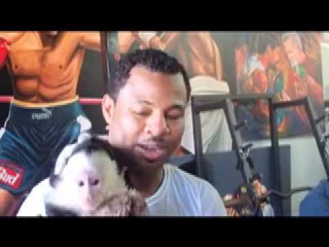 Sugar Shane Mosley And His Pet Monkey, Tito