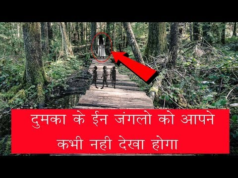 Exploring Wildlife at Dumka Jharkhand | Visit to a Mountain cum Forest Vlog #2