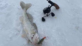Рыбалка на реке Нура в поселке Уялы Акмолинская область Коргалжынский район Карась на железку