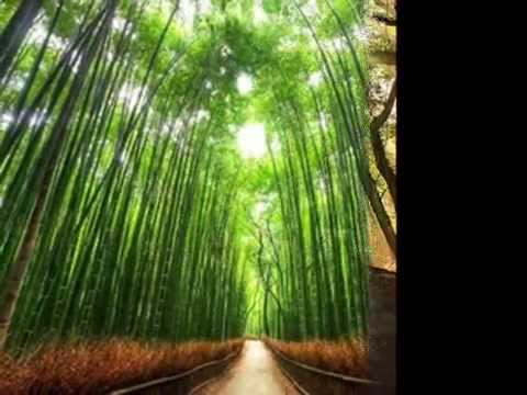 Silk Road - Kitaro # Journey To The Mountain And Waterfall - Going Back Home#