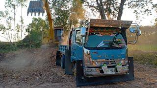 truck cat