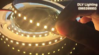 DLV-SL283502-120 Đèn LED dây giá siêu rẻ 12V 120led/m 3 màu sáng - DLV Lighting