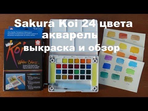 Акварель от Sakura Koi 24 цвета/Обзор и выкраска