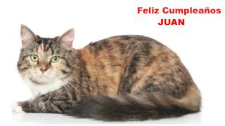Juan  Cats Gatos - Happy Birthday