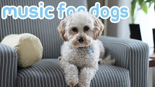 15 Hours of Deep Soothing Anxiety Music! Helped over 10 Million Dogs! NEW!