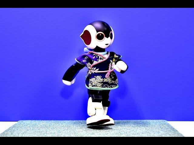 二足歩行ロボット ロビ(こころ2)