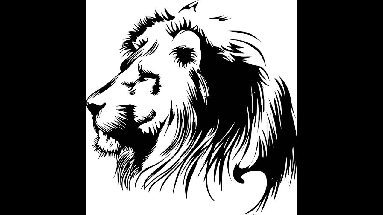 how to draw lion face step by step