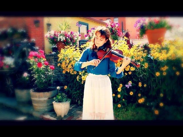 The White Cockade + Flowers of Edinburgh -- Fiddle Tunes!