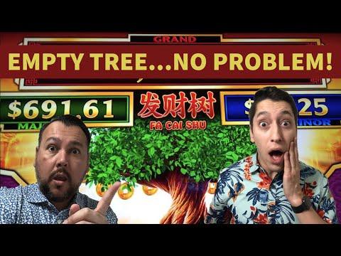 We WON So MUCH MONEY on the Fai Cai Shu Slot Machine