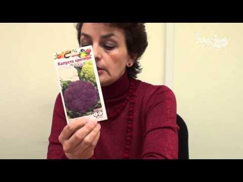 Фитоспорин  защита растений от болезней. Сайт Садовый мир