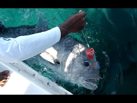 Seychelles Praslin Fishing March 2017 Part 2