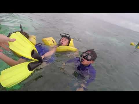 KIS Experiential Education--Fiji Marine Service and Cultural Exploration