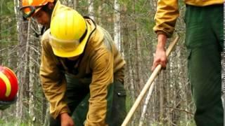 Лесной спецназ: мы тушим самые сложные пожары в России