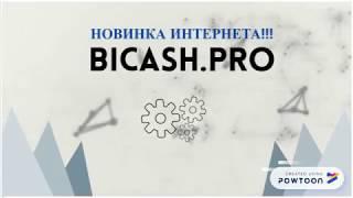 Маркетинг BICASH PRO присоединяйтесь если вам нужны большие деньги!