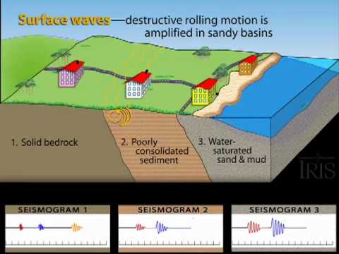 Amplification and Liquefaction Animation (Educational)