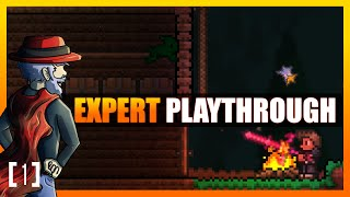 Terraria 1.3 Let's Play - Expert Mode Playthrough! Star Gazing [1] PC Gameplay