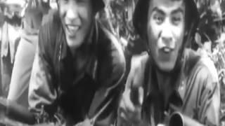 Phim Đất Mẹ (Chiến tranh biên giới Việt - Trung)