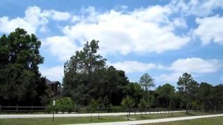 № 185 США Красивейший парк вдоль реки - Русские Флорида