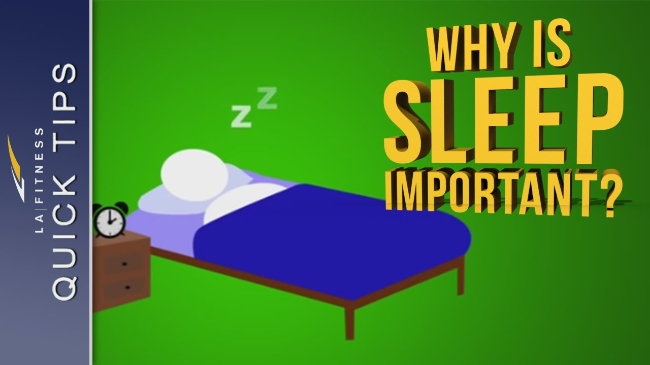 why we sleep We also know that during sleep, the brain orchestrates the manufacture of many different types of molecules — proteins, steroids, cholesterol, lipid rafts, human growth hormone, and many more on the other hand, if you don't get enough sleep (as happens to many shift workers), you suffer increased risk of heart disease and some cancers.