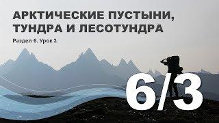 6/3 Арктические пустыни, тундра и лесотундра
