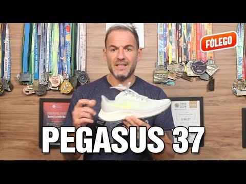 pegasus-37