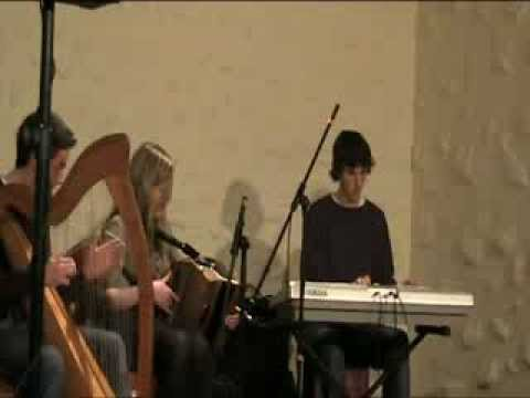 Dolphins got talent final- Traditional Irish music group Lamped