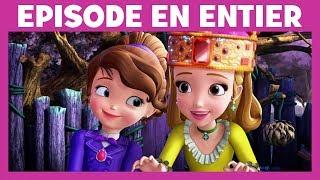 Princesse Sofia - Moment Magique : Sofia apprend aux Romkins à être gentil