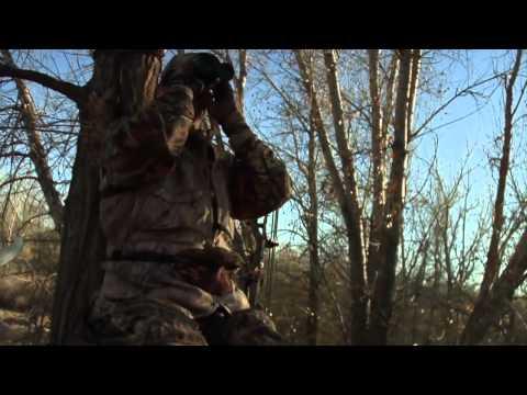 Colorado Deer Hunting | Pure Hunting S.1, Ep.4