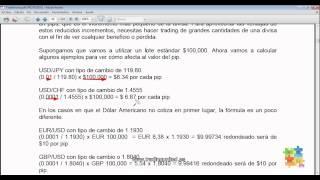 Curso de Forex - 7 de 99 - Qué son los Pips y los Lotes
