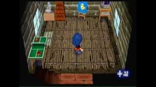 Animal Crossing Wii: Flânons avec Dolan [2]