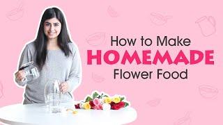 Easy Tips To Make Homemade Flower Food Floweraura Youtube