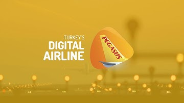Reference Story Pegasus Airlines
