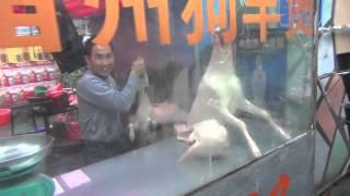 Китайцы едят собак? - Жизнь в Китае #30