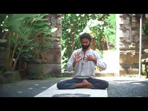 Mudra Dharma Chakra