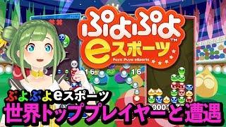 【激うま】「ぷよぷよeスポーツ」で世界トッププレイヤーと遭遇!