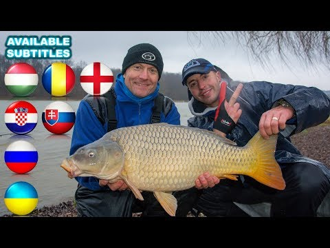 Coldwater Feeder Fishing for Carp  part 21. Stormy Spring A Movie by Gábor Döme