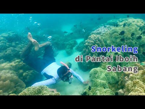 eksotik-wisata-snorkeling-di-sabang-aceh