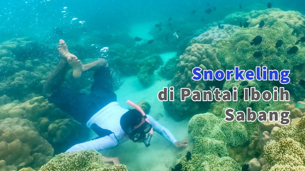 Eksotik Wisata Snorkeling Di Sabang Aceh