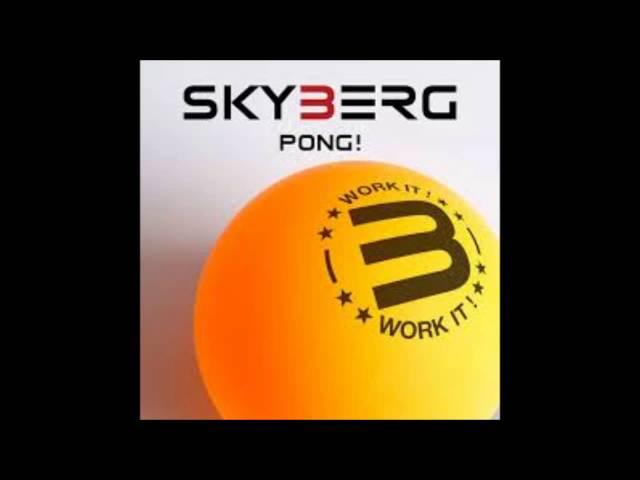 skyberg pong