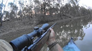 Pig hunting out West NSW