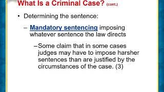 Chapter 16 2 Lesson Criminal Cases