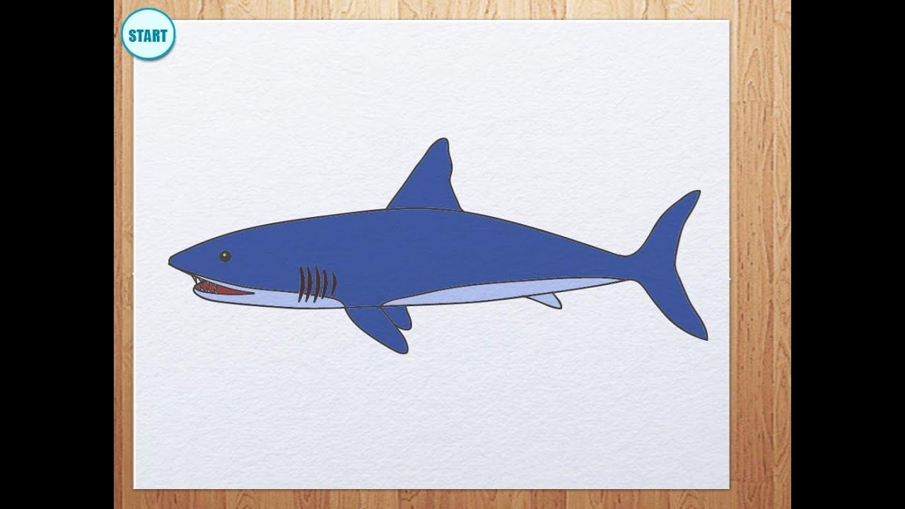 How to draw shark - YouTube