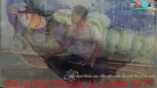 Đi Tìm Nỗi Đau - Hồng Ngọc-Mr Đàm - http://tunfashion.wordpress.com