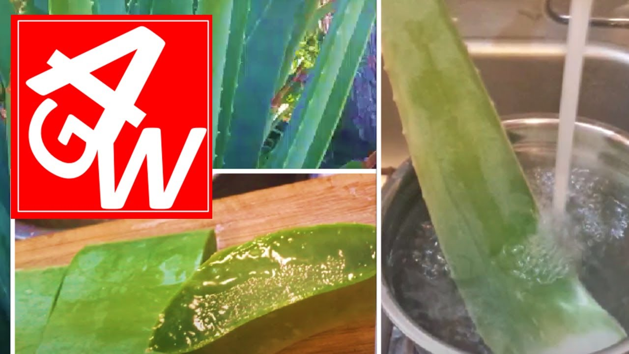 how to make aloe drink