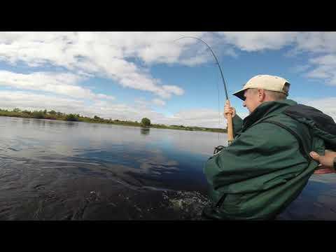 Salmon Fishing River Forth Aidan McGuire